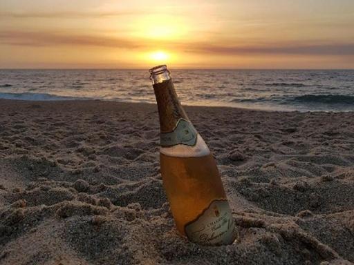 Champagne Delouvin-Moreau - Où nous trouver - Vandières